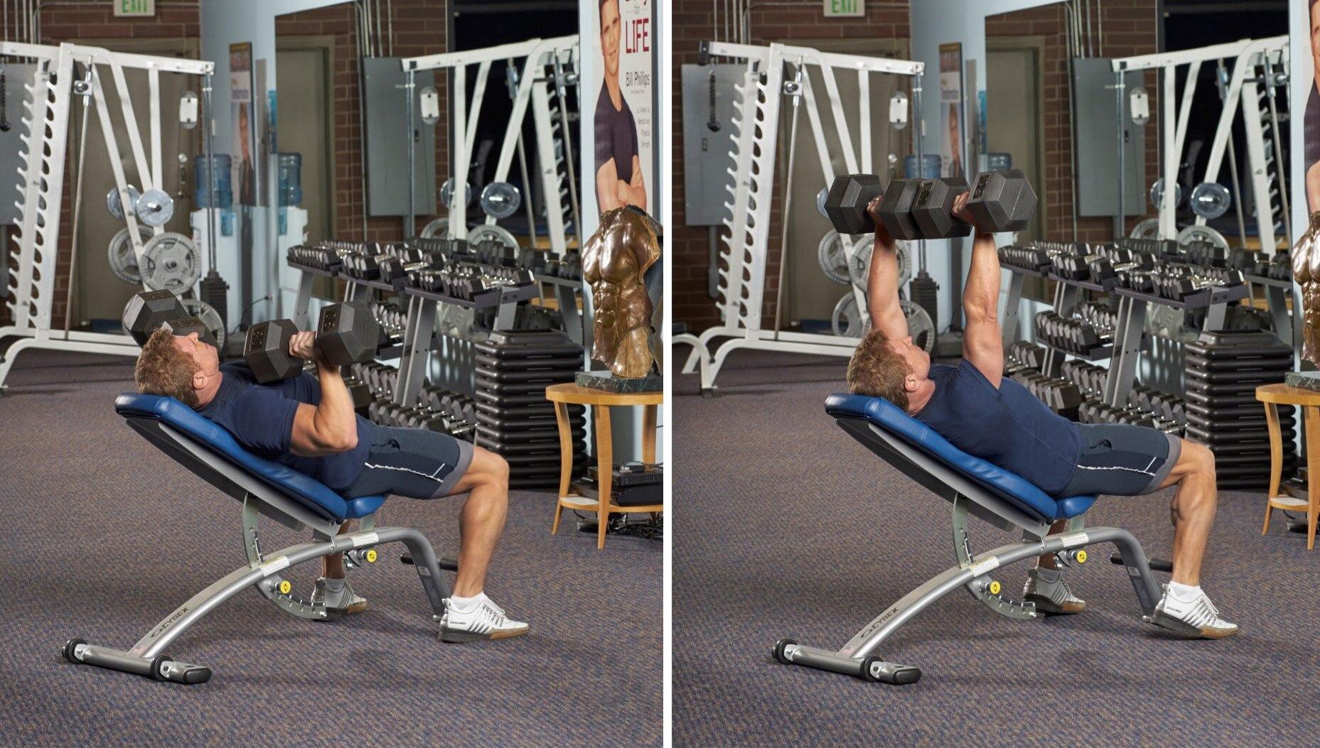 incline reversegrip dumbbell bench press exercise